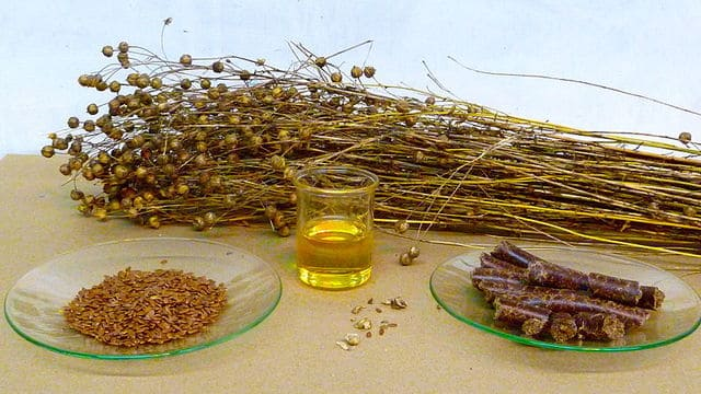graines-de-lins-dorées