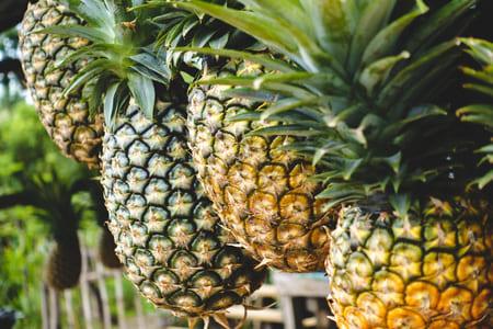 Ananas-aliments-qui-stimulent-la-serotonine