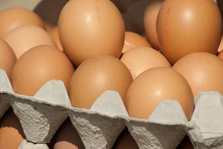 OEufs-aliments-qui-stimulent-la-serotonine