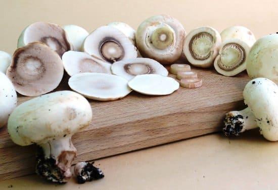 Aliments-riches-en-mineraux-champignons