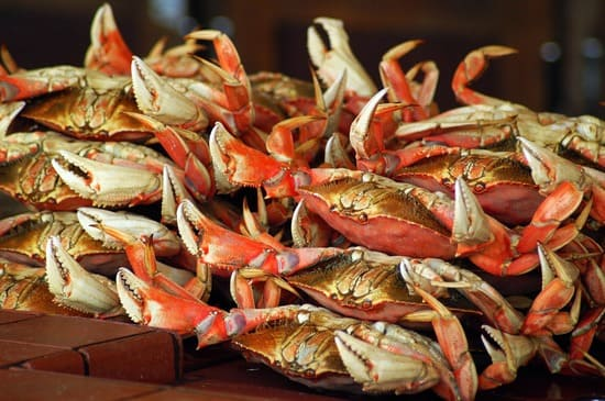 Aliments-riches-en-mineraux-crustaces